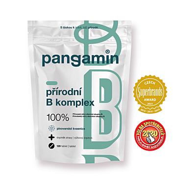 Pangamin přírodní B-komplex, 120 tablet