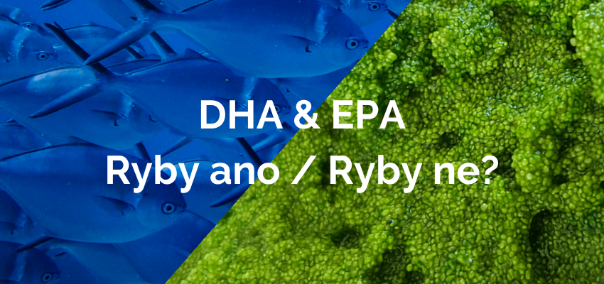 Omega 3 DHA & EPA: Ryby ano / Ryby ne?